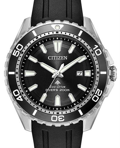 Citizen promaster dive watch manual