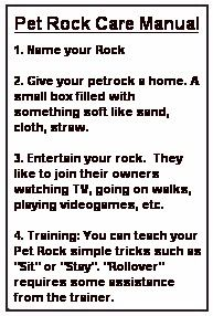 pet rock training manual pdf